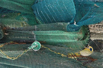 redes verdes